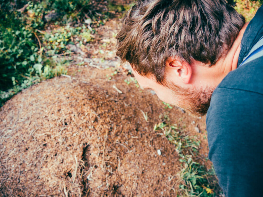 vorarlberg lech zuers lechweg first-stage hiking man ants