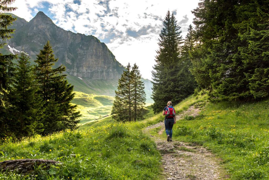 vorarlberg bregenzerwald kanisfluh wandern frau berg bäume