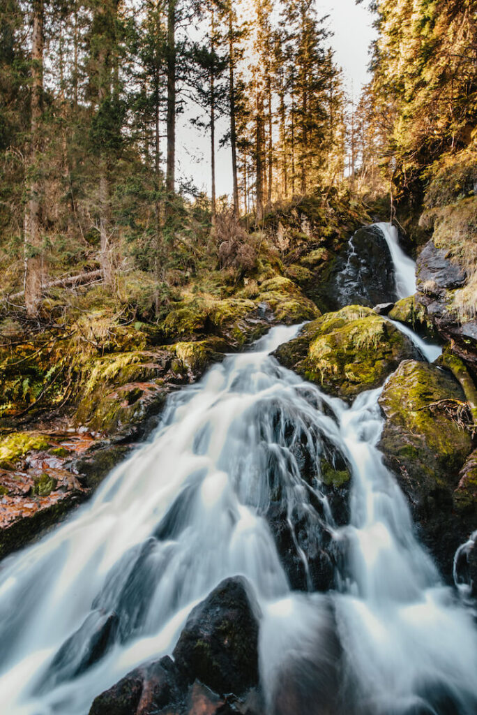 switzerland heidiland autumn fall hiking forest water river trees murgsee