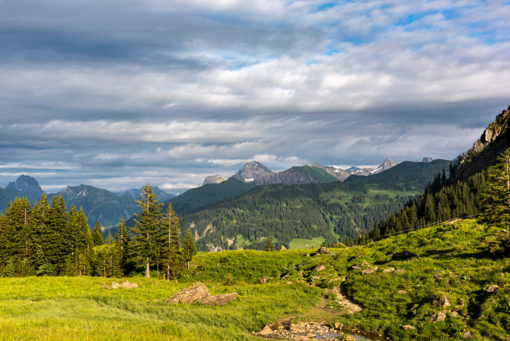 vorarlberg bregenzerwald kanisfluh wandern berg bäume