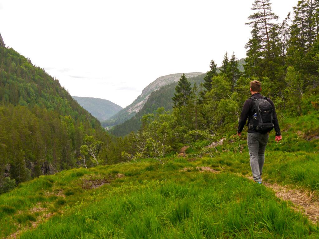 norwegen wandern baum berg mann grass