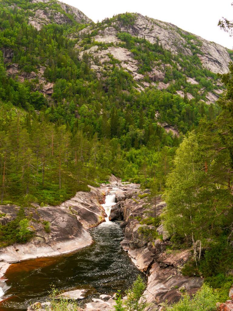 norwegen fluss wasser baum berg felsen