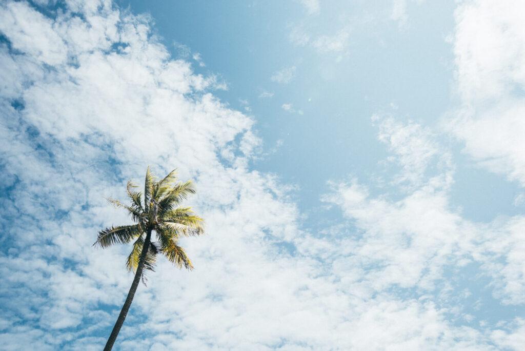 thailand koh-kood soneva-kiri sky clouds palm tree