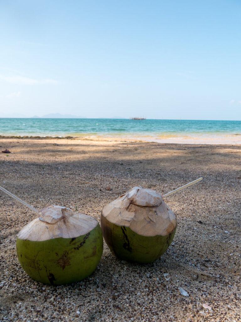 thailand koh-mak beach sea water sand coconuts