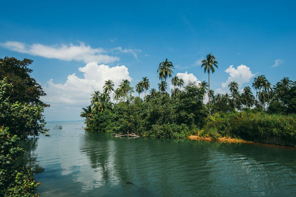 thailand koh-chang insel palme meer wasser wolken