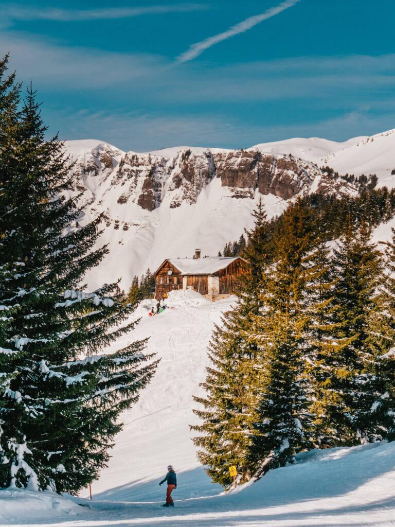 vorarlberg damüls-mellau damüls mellau skigebiet winter ski-fahren snowboard bäume