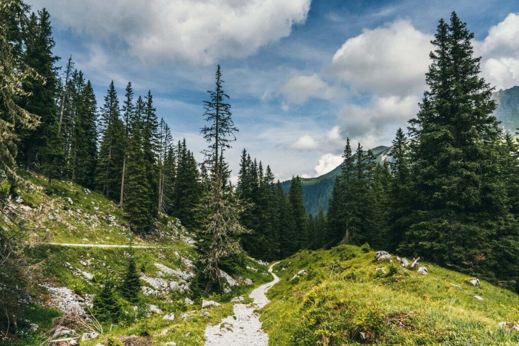 vorarlberg montafon gauertaler-alpkultourweg lindauer-hütte gauertal hiking path