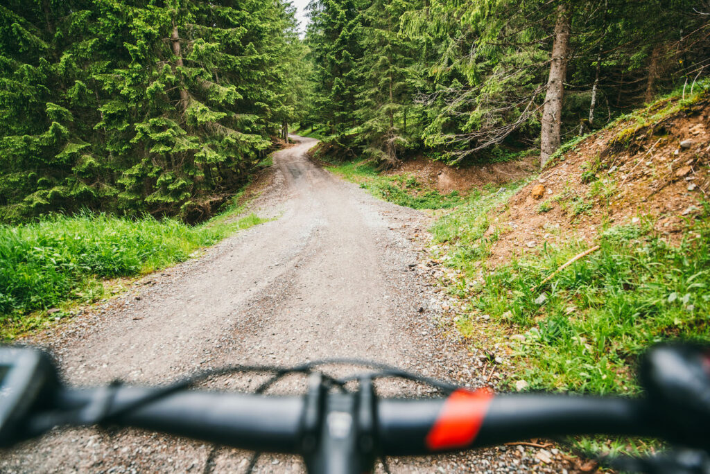 vorarlberg montafon itonskopf mountainbike single-trail berge weg wald