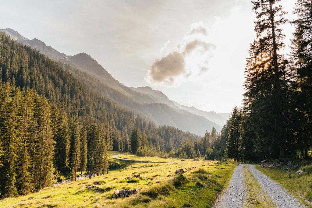 vorarlberg montafon silbertal langsee mountainbike berge bäume sonne weg