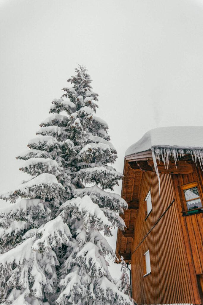 vorarlberg laterns laternsertal ski-fahren schnee skigebiet baum haus