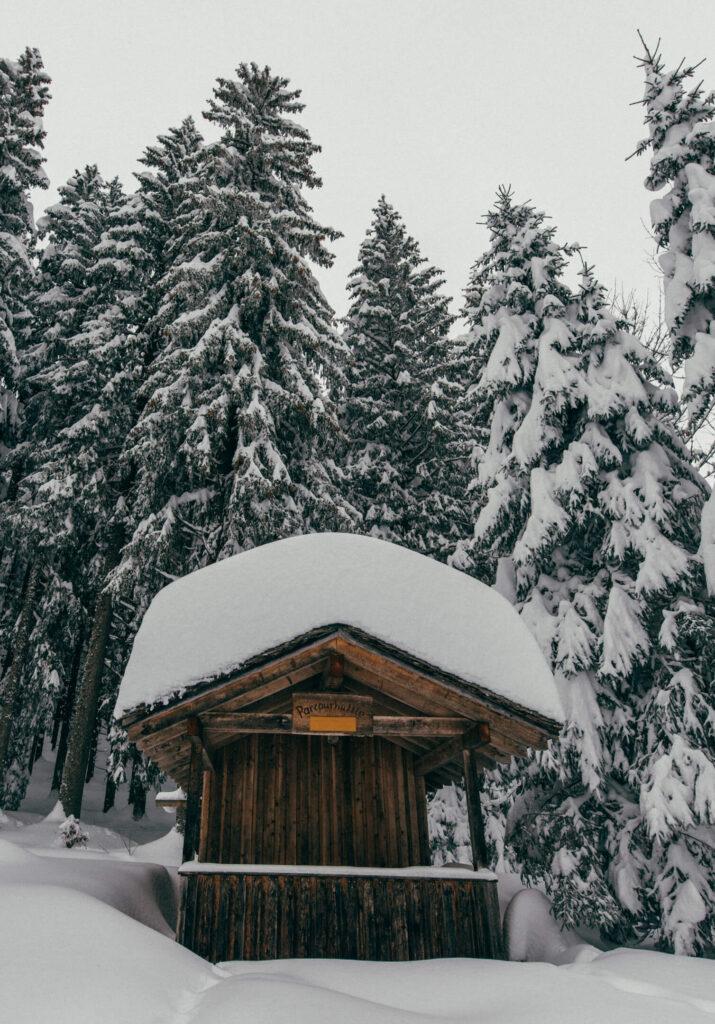 vorarlberg laterns skiing laternsertal snow hut woman trees