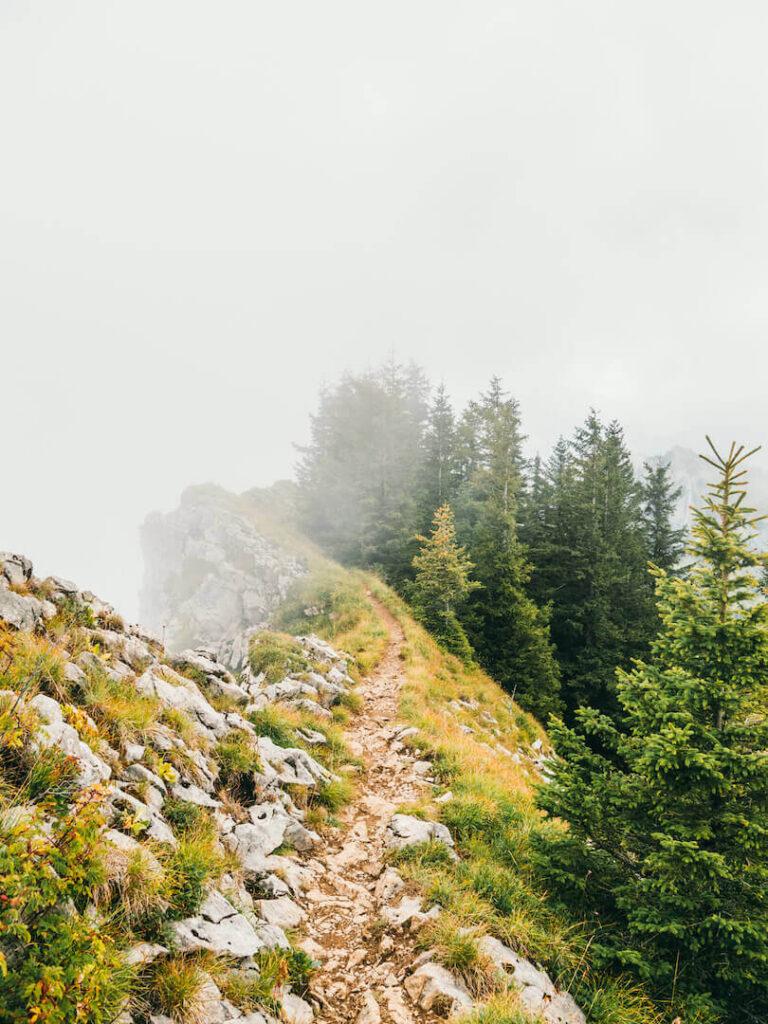 vorarlberg bregenzerwald bezau winterstaude hiking clouds trees path