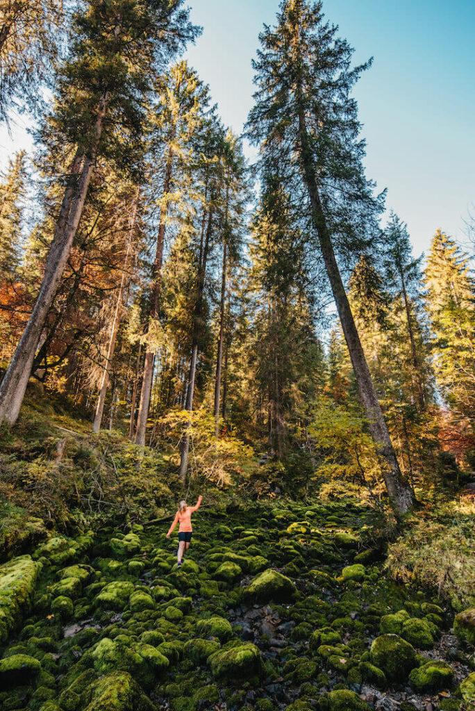 vorarlberg kleinwalsertal sonnenburg mountainbiking autumn fall woman forest