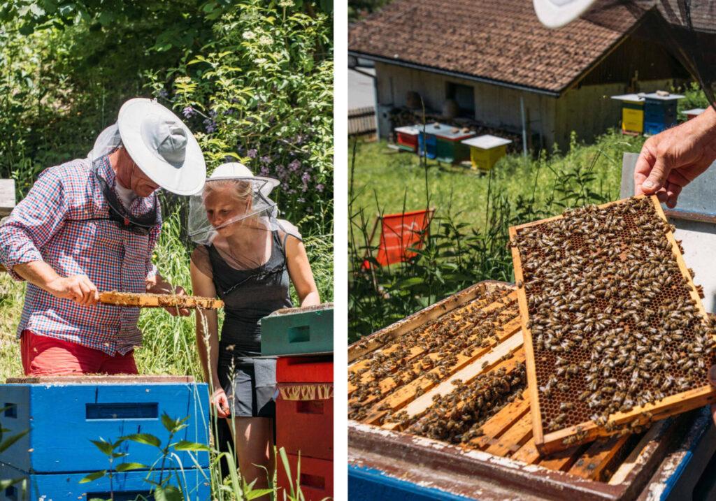 vorarlberg montafon bartholomäberg hiking bees schruns beekeeper woman