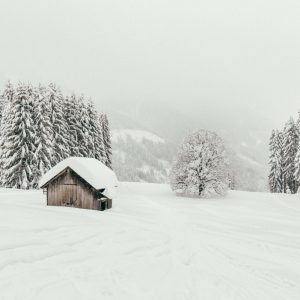 vorarlberg laterns skiing laternsertal snow mountain trees