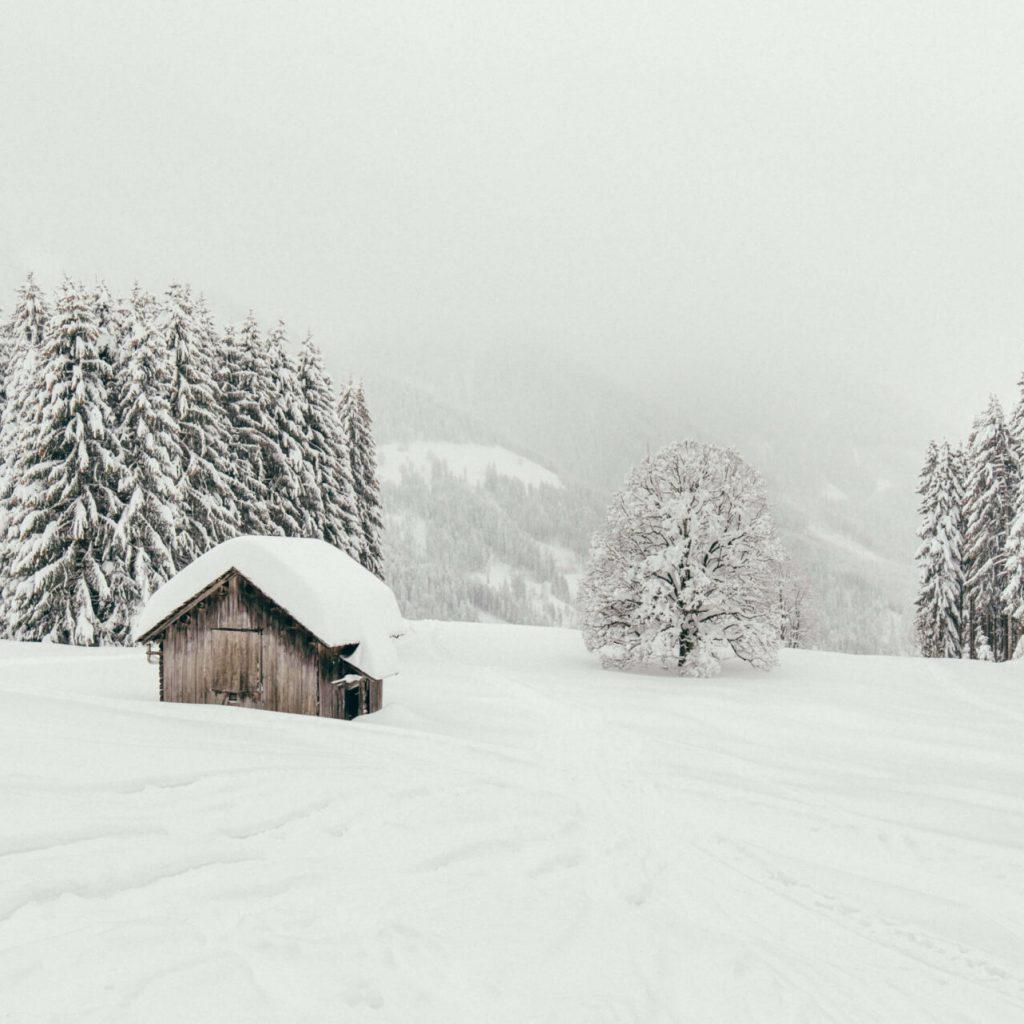 vorarlberg laterns laternsertal ski-fahren schnee skigebiet bäume berge