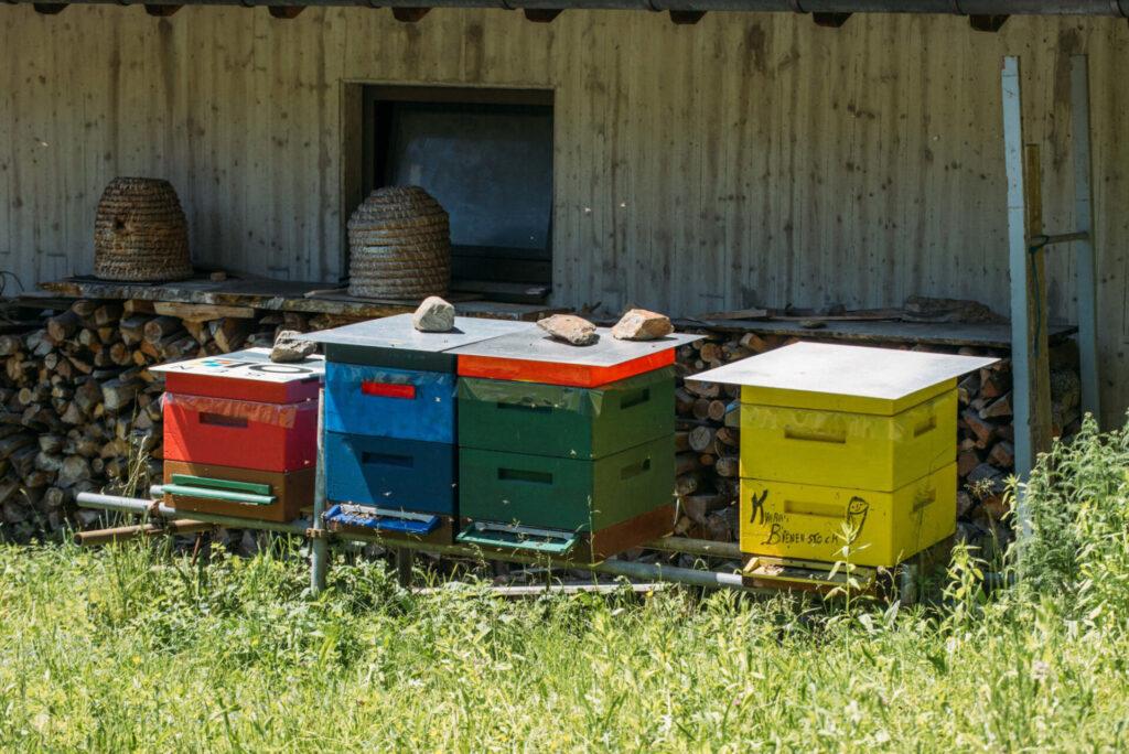 vorarlberg montafon bartholomäberg schruns imkerwanderung bienen imker bienenstock